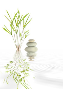 Zen abstract of bamboo grass with reflection over rippled water, over white background.